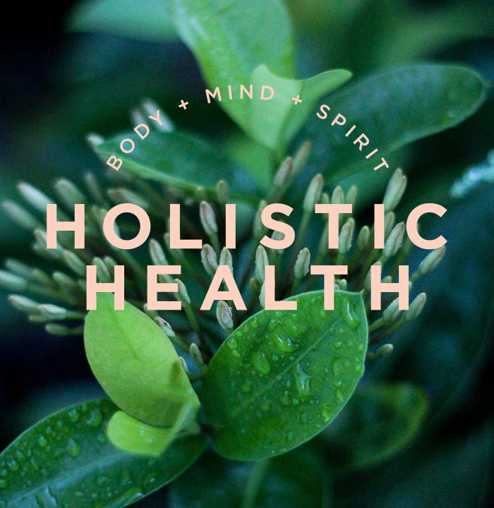 holistic health training
